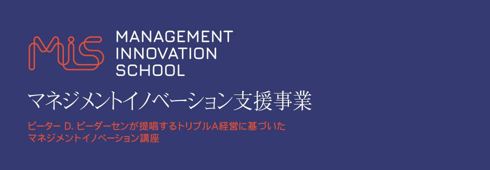 マネジメントイノベーション支援業務